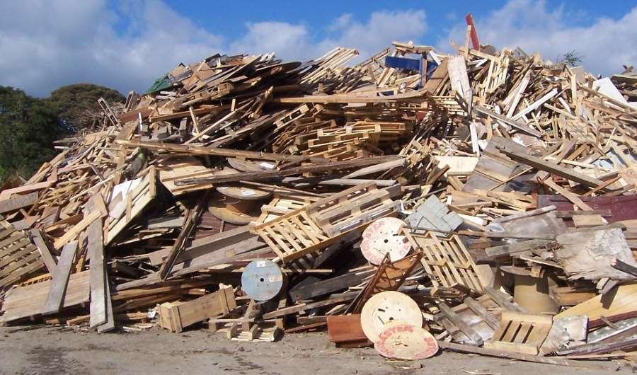 Прием древесины и деревьев — способы переработки и использование