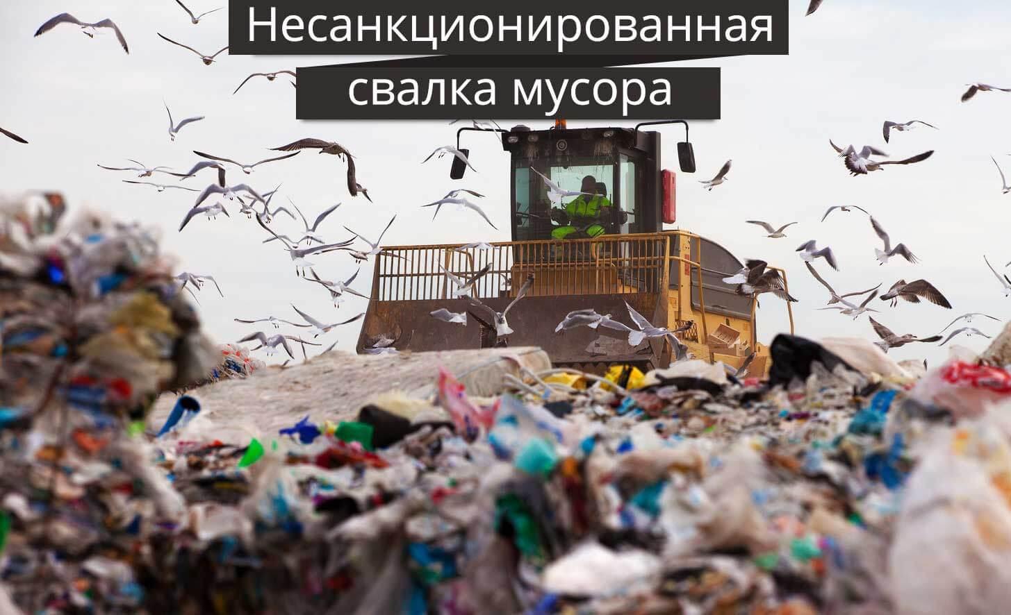 Что такое несанкционированная свалка мусора и кто должен ее убирать