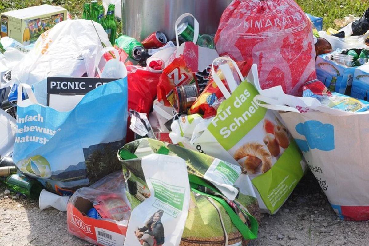 Размер штрафа за выброс мусора в неположенном месте и статья КоАП