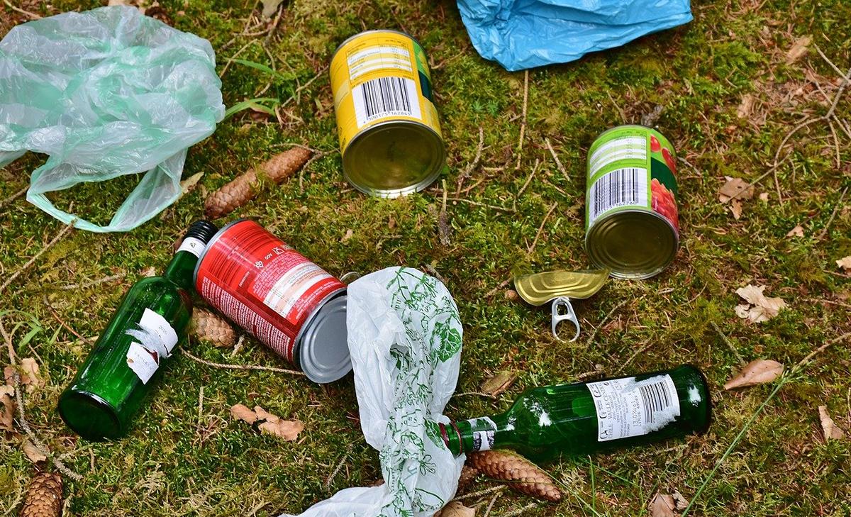 Выброс мусора в лесу