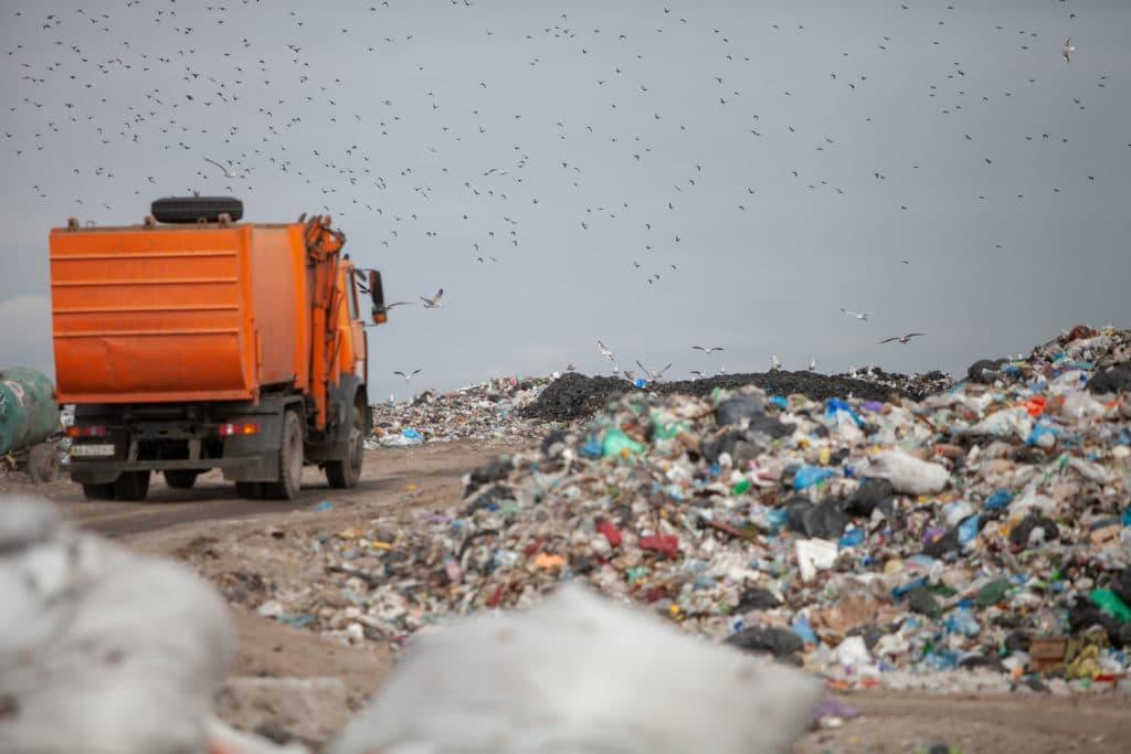 Минприроды РФ поможет регионам справится с мусором