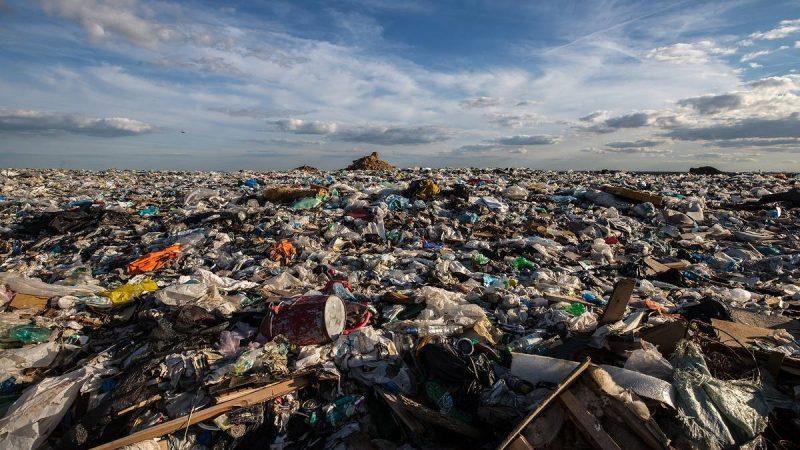 Для ликвидации свалок в России нужно разделять мусор