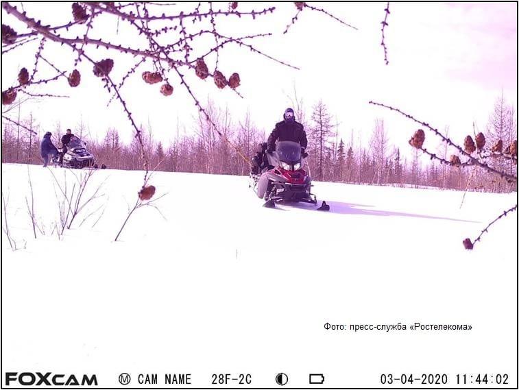 На Ямале организаторов стихийных свалок фиксируют фотоловушками