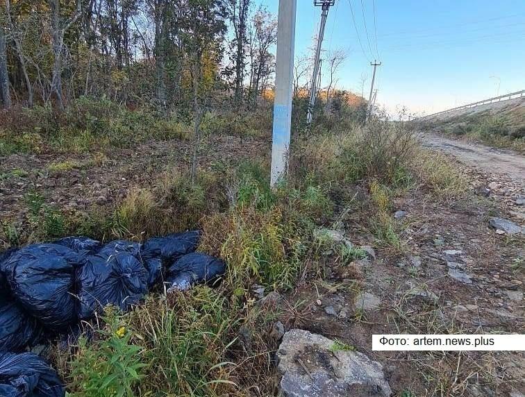 В Приморье жители жалуются на несанкционированную свалку крабовых отходов