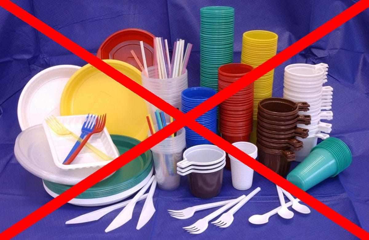 Запрет одноразовой посуды в аэропорту и самолёте
